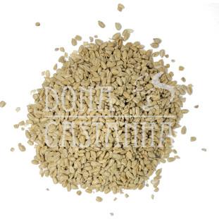Semente de Girassol Torrada e Salgada 100g (Pepita)